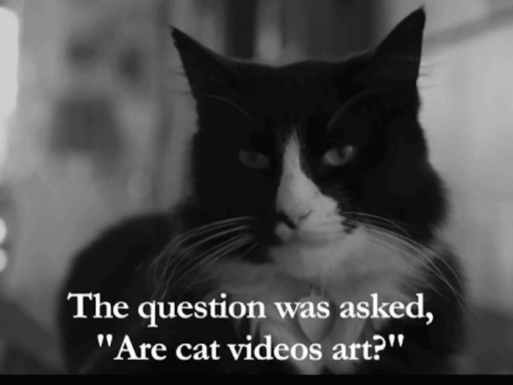 Henri the cat.jpg